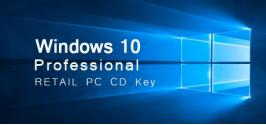 Windows 10 Professional Retail PC CD Key